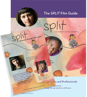SPLIT DVD and Guide